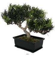 Bonsaï artificiel, Arbre à Thé, H23 cm 98 feuilles
