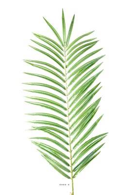 Feuille de Palmier Phoenix artificielle en tissu H 60 cm
