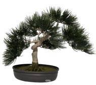 Bonsaï artificiel Angel Pinus, H 44 cm, Finition mousse