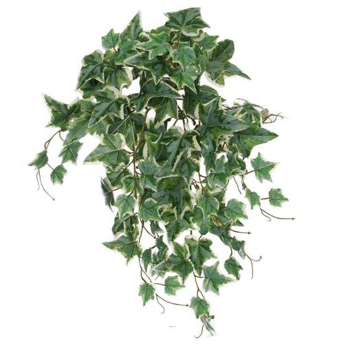 Chute de lierre artificiel ANTI-UV H 50 cm Blanc-vert