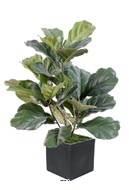 Ficus Lyrata Artificiel troncs PE en pot tres chic et original H 60 cm Vert