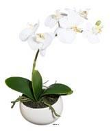Orchidee artificielle 1 hampe en pot ceramique H 26 cm Blanc neige