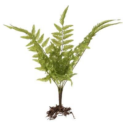 Fougère des forêts osmuda regalis artificielle en piquet finition racine, H 50 cm
