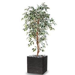 Ficus Benjamina artificiel Panache grande feuille 1 tronc naturel en pot tronc naturel H 120 cm
