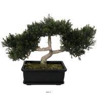 Bonsaï artificiel, Cèdre H 23 cm, 113 feuilles