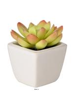 Echeveria Plante grasse artificielle succulente cactee en pot ceramique