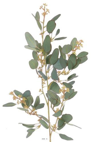 Eucalyptus artificiel en branche H 65 cm Vert