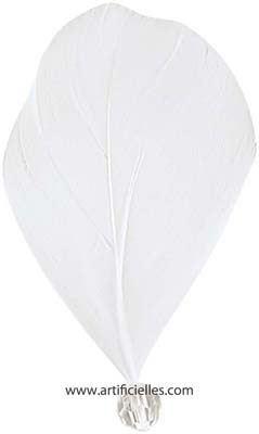 Plumes Perlees Blanc x 6 pieces 4 x 8 cm