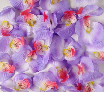 Tetes d'orchidees X 20 Lavande en sachet D 6 cm