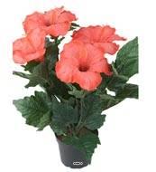 Hibiscus artificiel en pot H 38 cm 6 tetes rose Fushia