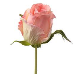 Rose Eden artificielle H 25 cm Rose pâle superbe Tete tissu diametre 5 cm environ