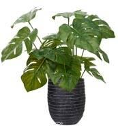 Philodendron artificiel en pot, H 35 cm, feuillage en tergal