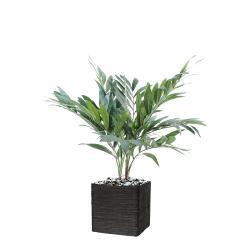 Palmier Parlour Artificiel H 65 cm D 55 cm 2 troncs pot