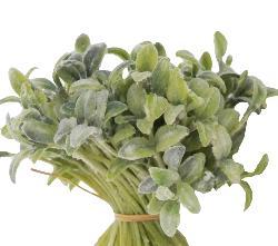 Jeunes pousses de salades artificielles H15cm