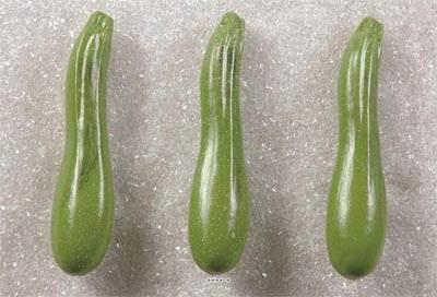 Courgette verte artificielle X 3 en Plastique soufflé L 180x40 mm