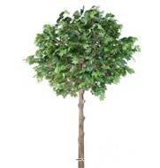 Platane arbre artificiel H 300 cm L 190 cm Tronc bois et fibre de verre sur platine