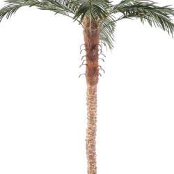 Palmier Phoenix Artificiel H 210 cm D 150 cm Tronc fibre de verre en pot