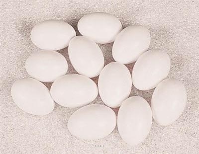 Œuf de poule blanc artificiel X 12 en Plastique soufflé H 65x45 mm