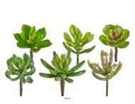 Plantes grasses artificielles succulentes cactees X6 Tetes melangees