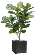 Ficus Lyrata Artificiel tronc PE en pot Figuier factice H 90 cm D 65 cm Vert