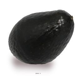 Avocat legume artificiel D 6,50 cm et hauteur L 10 cm sans leste superbe