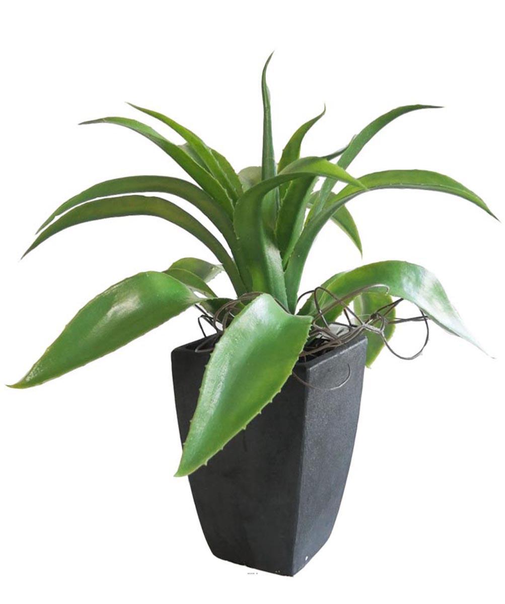 Agave Succulente plante artificielle cactee en pot H 29 cm Vert Type A