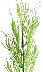 Branche d'herbe de Corail artificielle H 49 cm plastique exterieur aerien Blanc-vert