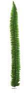 Feuille de fougere Persane artificielle L 84 cm superbe