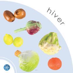 Lot 11 Légumes et fruits artificiels d'Hiver en plastique soufflé