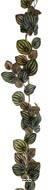 Guirlande artificielle ramifiée, vert foncé, de feuilles de Pépéromia H 180 cm