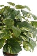 Pothos artificiel en pot H 40 cm, D 34 cm