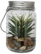 Senecio artificiel en pot de verre, avec guirlande LED, type A