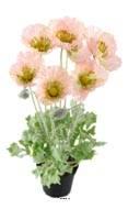 Pavot artificiel en pot H 45 cm D 30 cm Rose-vert