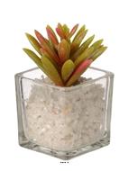 Agave artificielle succulente cactee en pot verre et cailloux blanc