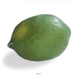 Citron vert artificiel L 8 50 cm lime