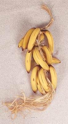 Regime de 15 bananes artificielles en Plastique soufflé L 60 cm