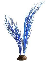 Sagittaria artificielle bleue lestee H 25 cm environ pour aquarium et vivarium PROMO