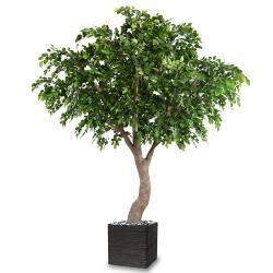 Hêtre Artificiel H 360 cm D 280 cm 8850 feuilles en pot