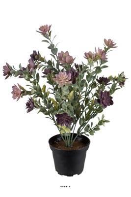 Succulente fleurie artificielle en pot, cactée fleurie Violet H 30 cm D 25 cm plastique