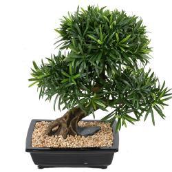 Bonsaï Podocarpus Artificiel H 50 cm D 45 cm en pot