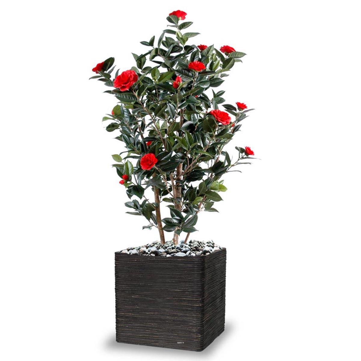 Camelia artificiel du Japon tronc bois H 170 cm fleurs rouges