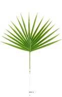 Feuille palmier Chamaerops artificielle H 40 cm D 26 cm plastique