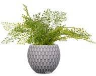 Adiantum plante verte artificielle en pot D 45 cm