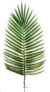 Feuille de palmier Phoenix H 63 cm Plastique pour exterieur D 27 cm superbe