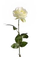 Rose Nina artificielle Champagne H 70 cm Tete superbe de 9 cm 3 feuilles superbe
