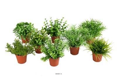 Herbes artificielles variées en pot mini plantes assorties X8 pots Feuillage plastique H 9-12 cm
