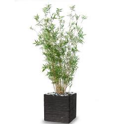 Bambou Oriental Artificiel cannes fines en pot H 100 cm D 35 cm Vert