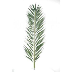 Feuille de palmier Phoenix artificielle en tergal H 220 cm Vert