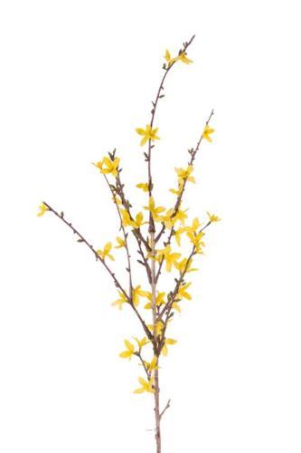 Branche de Forsythia artificiel Jaune H 88 cm 41 fleurs superbe