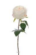 Rose artificielle Boule D 11cm type Piaget H 48 cm  Crème